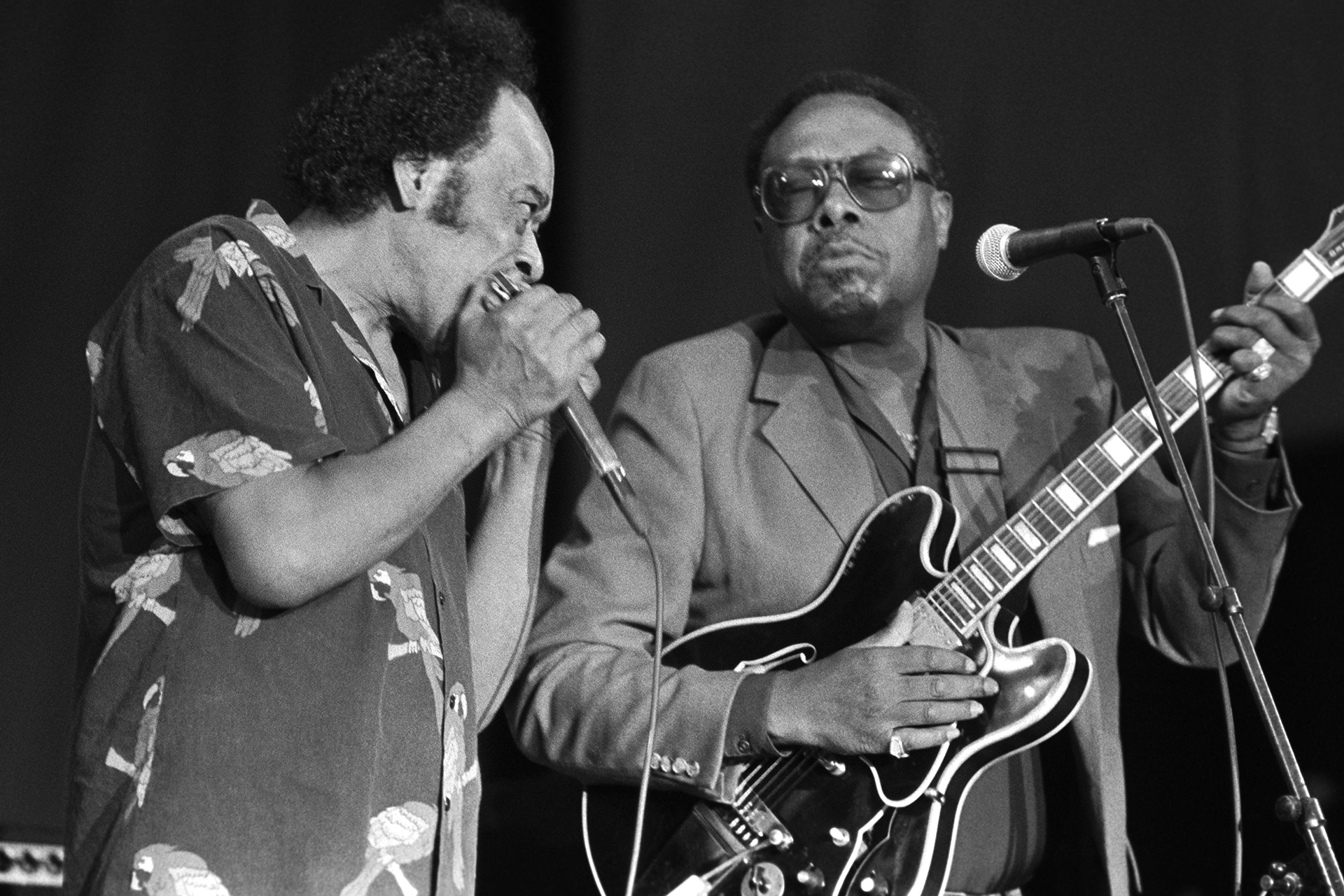 Picture of two musicians by Kirk West